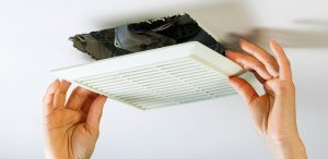 What You Need to Know About Air Duct Cleaning